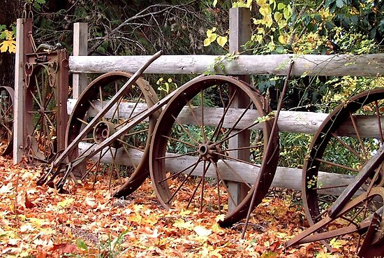 Wheel Fence in Autumn by Marjorie Wallace