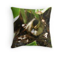 Beautiful Duckling Throw Pillow