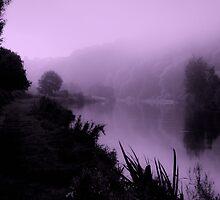 misty morning velvet by Andrew Jones