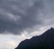 Arctic Storm by Dandelion Dilluvio
