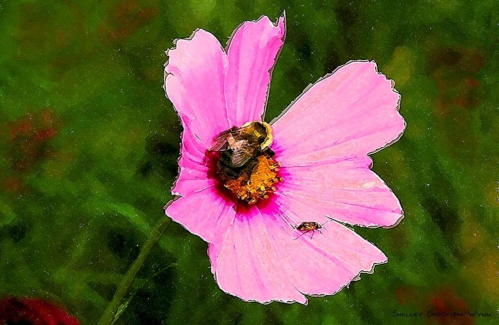Bumble Bee / Summer / by Shelley  Stockton Wynn