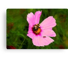 Bumble Bee / Summer / Canvas Print
