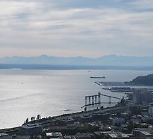 Puget Sound by Cathy Jones