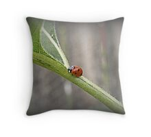 Ladybug Freeway Throw Pillow