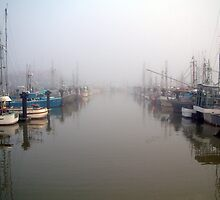 The Fleet In Fog by jakking