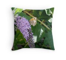 Butterfly on butterfly bush Throw Pillow