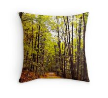 Autumn Country Lane I / Throw Pillow