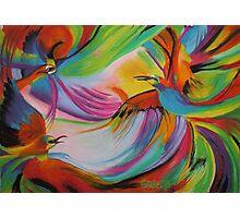 Fire Birds Photographic Print