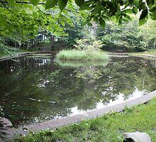Heart-shaped Pond by zahnartz