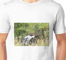 4212015 water Unisex T-Shirt