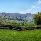 Mountain View by Sandy Keeton