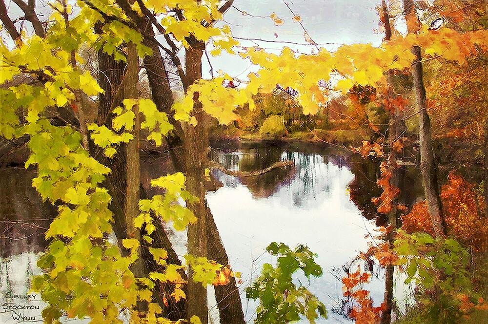 Grand River  /  Autumn in Michigan by Shelley  Stockton Wynn