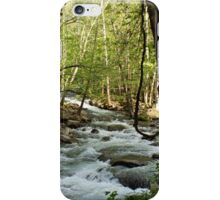 River at Greenbrier iPhone Case/Skin