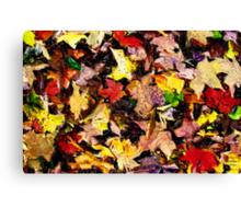 Autumn Pattern  /   Canvas Print