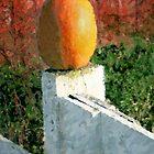 Pumpkin  / by Shelley  Stockton Wynn
