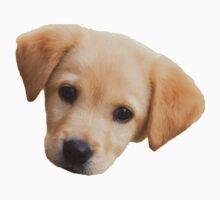 Puppy  by adjsr