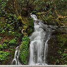 Waterfall by Sandy Keeton