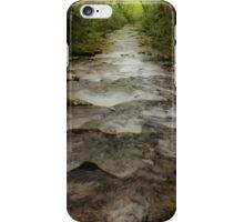 Downstream iPhone Case/Skin
