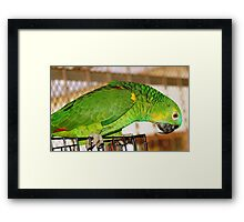 HI, WHO ARE YOU? Framed Print