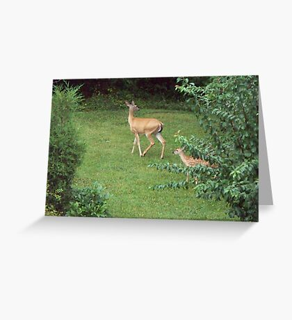 Mom and 1 of the twins Greeting Card