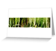 In The Glades Greeting Card