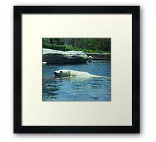 Playful Polar Bears Framed Print