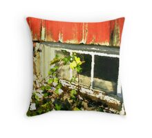 Grainery Window / Throw Pillow