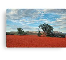 Red Rock/ Red Soil Canvas Print