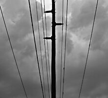 Wired III by dangrieb