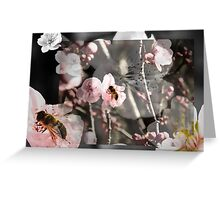 Cacophony of Spring Greeting Card