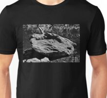 He carved his face into stone Unisex T-Shirt