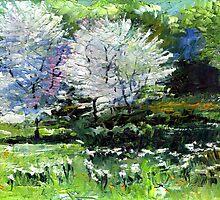Germany Baden-Baden Spring 2 by Yuriy Shevchuk