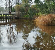 Seven Creek,Euroa by Joe Mortelliti