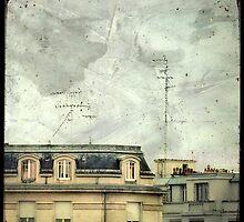 Antenne aux Etourneaux by Marc Loret