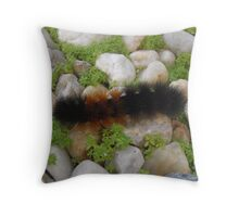 Full of Fuzz Throw Pillow