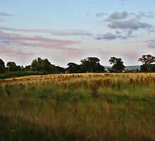 Bramhall Landscape by rasmusrok1