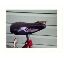 Riding a Bike Art Print