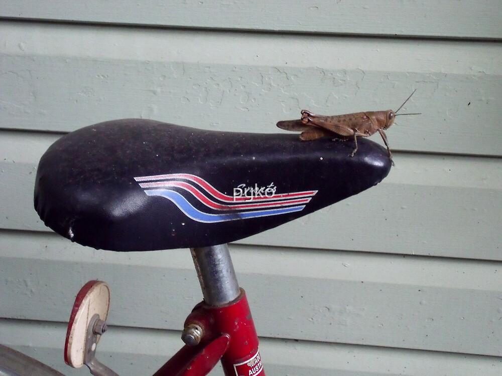 Riding a Bike by pyko