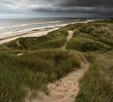 Walking the dunes. by Jonas Kroyer Photography