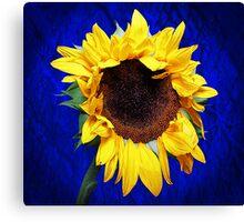 Sad Sunflower Canvas Print