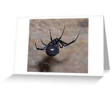 black widow spider Greeting Card
