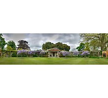 Vineyard HDR Panorama, Hole Park Gardens, Kent, England Photographic Print