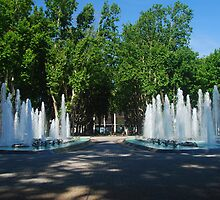 Fountains of Perpignan by Peter Reid