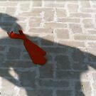 SMART SHADOW by RakeshSyal