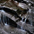 Filmore Glen State Park IV by PJS15204
