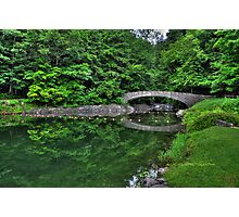 Filmore Glen State Park V HDR Photographic Print