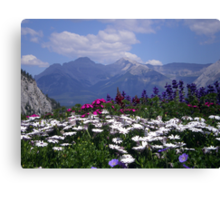 View from the Patio Canvas Print