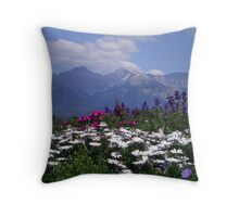 View from the Patio Throw Pillow