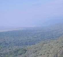Lake Manyara Haze by stephenmark photography