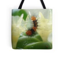 Little Chewi - Orange and black caterpillar Tote Bag